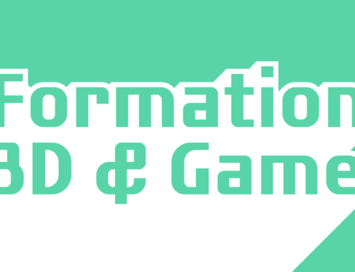 Formation 3D & Jeu vidéo